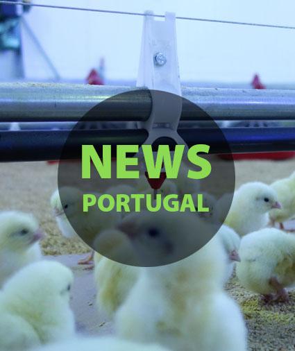 News Portugal